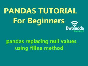 pandas replacing null values using fillna method