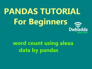 word count using alexa data using python pandas