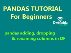 pandas adding dropping and renaming columns in data frame