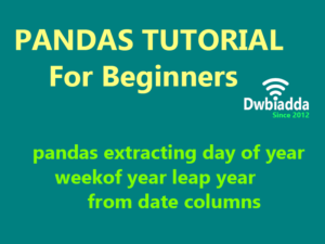 pandas extracting day of year weekof year leap year from date columns